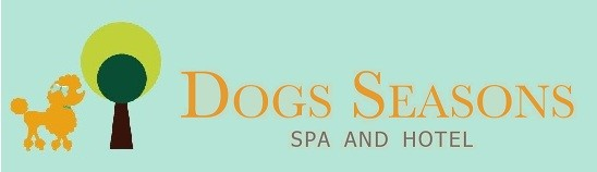 DOGS SEASONS Online Shop