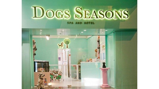 DOGS SEASONS